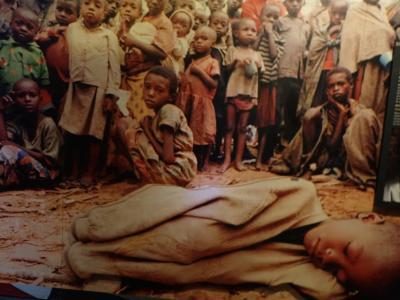 ウガンダ・ルワンダ マウンテンゴリラとナイルの源流 ⑦最終回 胸を締め付けられる虐殺記念館 帰国
