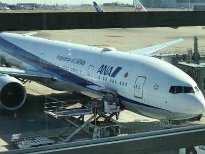 2020年2月、台北→羽田→ニューヨーク→トロント 搭乗記 【その2】 HND→JFK(NH110 THE Room編)