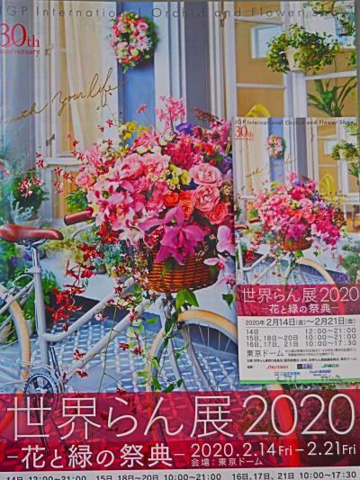 世界らん展18 ハンギングバスケット部門:資料さらりと保存 ☆東京ドームを後にして