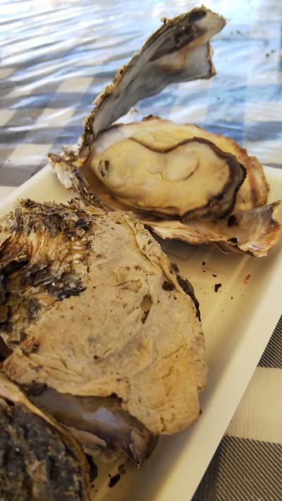 赤穂へ牡蠣を食べに行ってきました。~キャンプ~