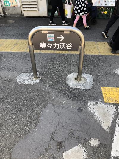 東京近郊ツアー:等々力渓谷