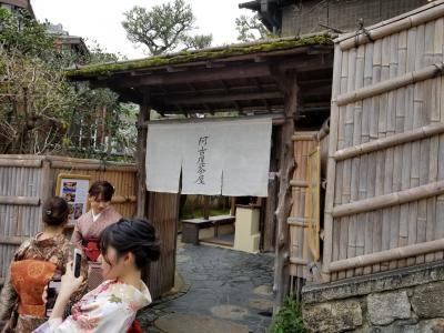 人気の阿古屋茶屋行ってみました