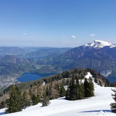 オーストリアで自然を楽しむ旅・3(2019年4月-5月 ザンクト・ギルゲン、ウィーン編)