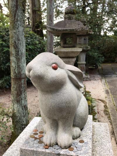 京都伏見稲荷&うさぎ神社&ねずみ神社へ行ってきました