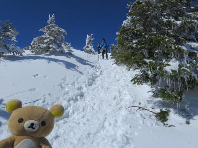 雪山の北横岳行って来るクマその1