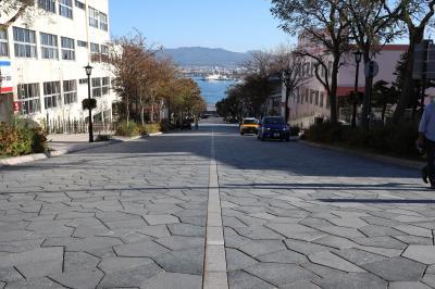北海道プチ縦断③たっぷり歩いた函館ひとり1日観光