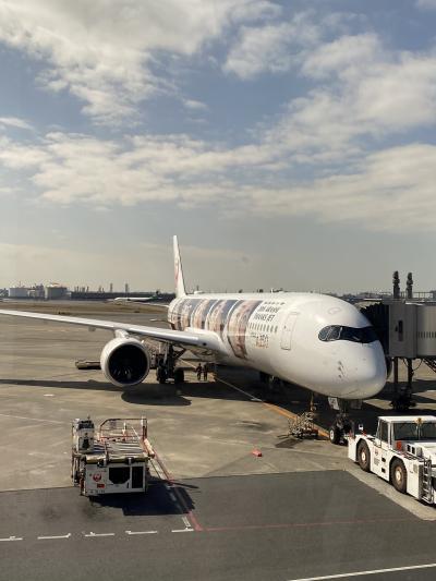 JAL A350で行く福岡1日目 移動と梅の太宰府天満宮