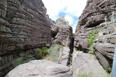 カンガルー島ひとり旅⑥グランピアンズ国立公園~帰国