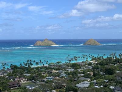 有休要らず!週末土日にホヌで行く人生2度目のハワイ