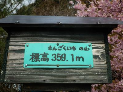 さんごくいちの山、プチ登山In浜松