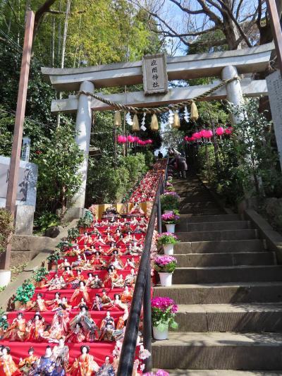 春よ来い 座間神社 ひな祭り  千体の雛