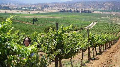 地の果てパタゴニアでの苦行の後にはワインの饗宴が♪