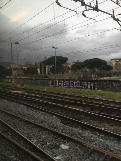 こんな時に初めてのイタリア7  行きはよいよい帰りはこわいミラノから帰国