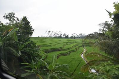 20年ぶりのインドネシア(2)ジャカルタからジョクジャカルタへ