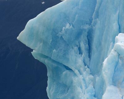 蒼き氷河のパタゴニアと雨季のウユニ塩湖  3日目 ロス・グラシアス国立公園 クルーズ観光 氷山・コンドル編