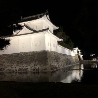 コロナウイルスで観光客が減ったと聞いた京都に行ってみた