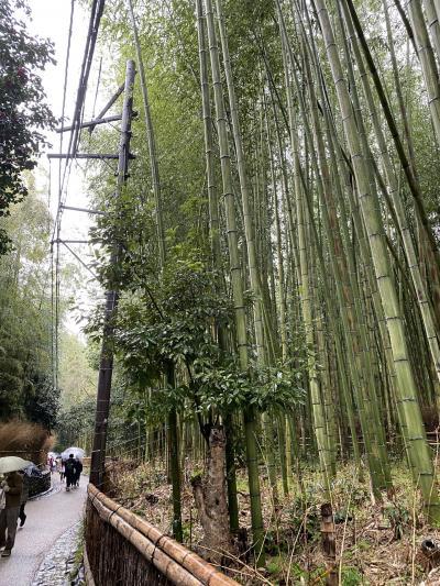 嵐山、嵯峨野へ