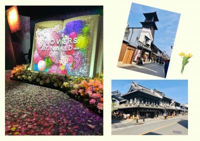 ちょこっとお花見イベント&小江戸の川越へ・・・