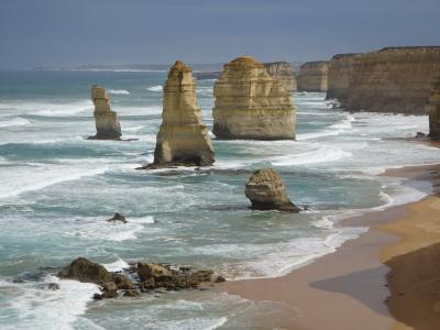 2020 旅友Eちゃんとの女子旅♪メルボルンで大自然を満喫☆オーストラリア
