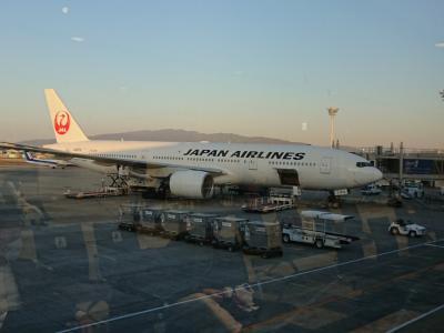 これからいってきます!JALとアメリカン航空で行くニューヨーク&カンクン  ***羽田空港より