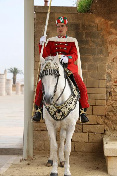 2月中旬 モロッコ・ポルトガルの旅