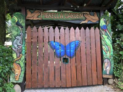 中米周遊 10 コスタリカ サラキビ自然保護区