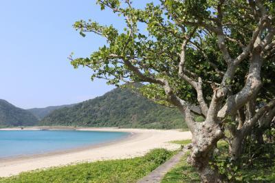 奄美大島の旅(3)~3日目 加計呂麻島~