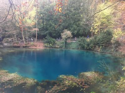 ドイツのプリトヴィツェ湖?!青い池とお城を訪ねる南ドイツ旅