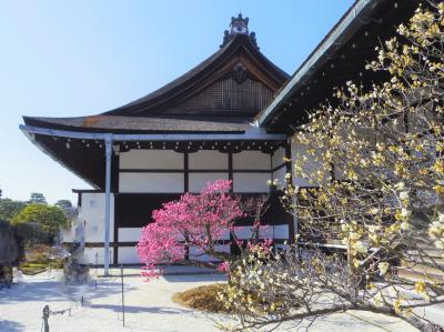 2020年2月、三連休の京都6:京都御所