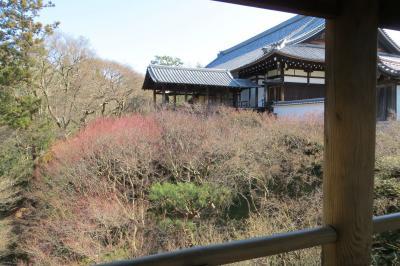 2020冬の京都/静けさは久しぶり…その1