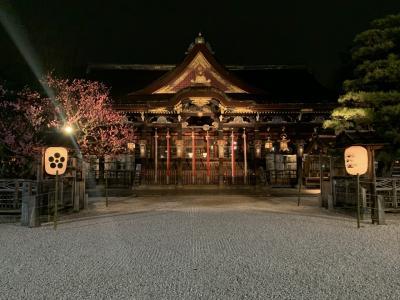 朝観光(23ー2) 京都(京の冬の旅)
