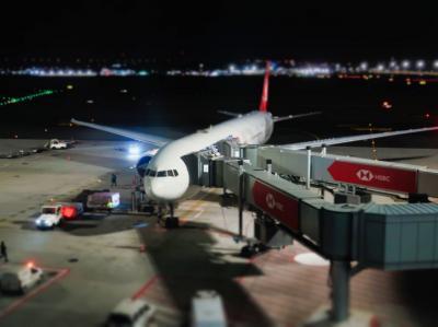 【2020海外】2泊4日でトルコ&ハンガリー #01 ~往路編 ターキッシュエアラインで成田からイスタンブールへ~