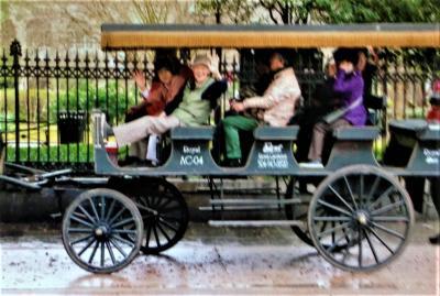 ニューオーリンズの歴史を伝える街並を馬車でとことこ観光