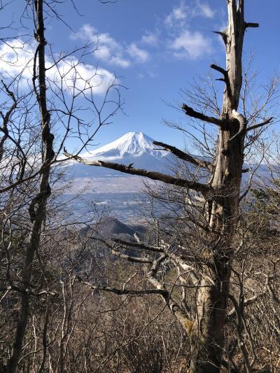 令和二年初登山~初富士を拝む