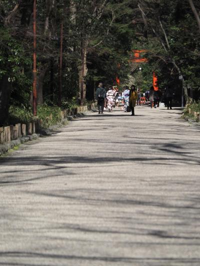 糺の森の下鴨神社へ