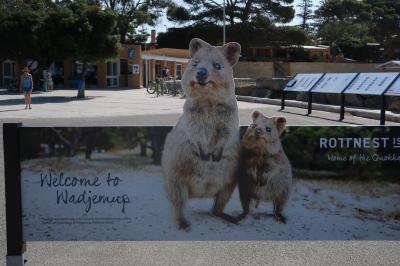 クオッカに会いにオーストラリアへ:2:ロットネスト島(1日目)