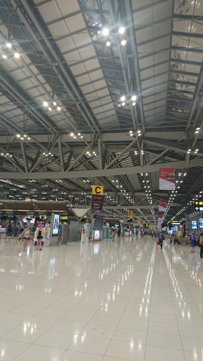 コロナ騒動の中、TG676/TG677でバンコクから日本往復