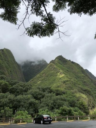 旧知の人々に会い、あらたな出会いのハワイ2020 マウイ島篇