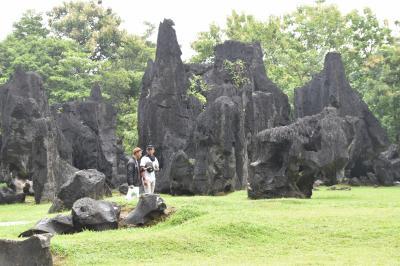 20年ぶりにインドネシア(5)セラウイッシュ、マロス