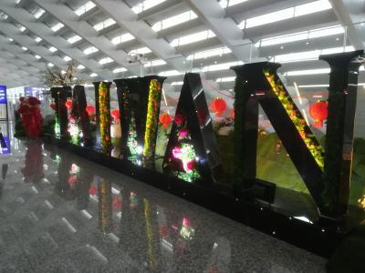 台湾旅行~台北 九分 十分
