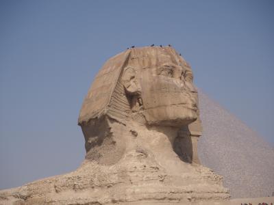 2020年 感動のエジプト・トルコ周遊10日間(2)エジプト編