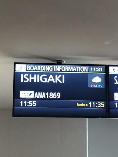 今年も竹富島に帰って来ました~