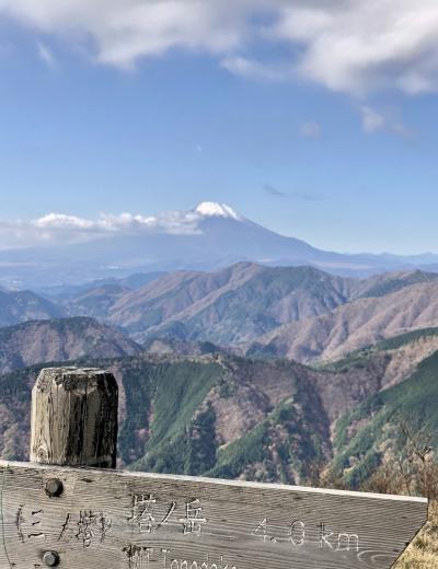 丹沢の三ノ塔登山~令和元年最後の山行