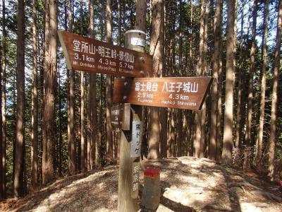 黒ドッケ登山と木下沢・高尾梅林の観梅