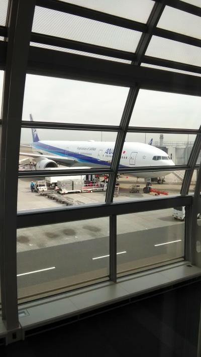 2020年フライトレビュー~2レグ目 ANA NH473 羽田→那覇