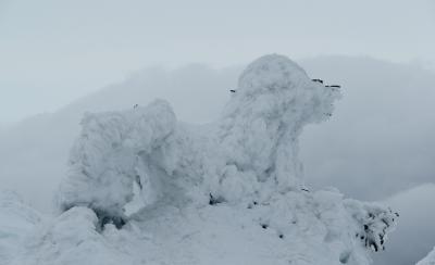 2つの名湯でめぐる 2県またぎで見る 2つの蔵王樹氷3日間 その2