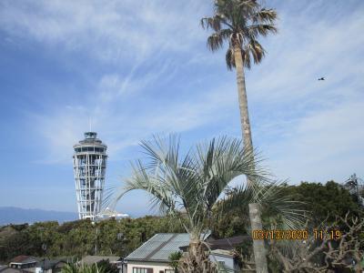 湘南:江の島に春の訪れ