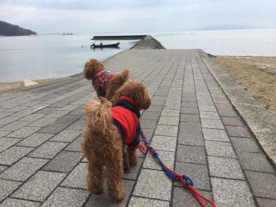 岡山☆愛犬とぶらり旅