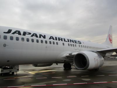2019年 JL3005 成田(NRT)-伊丹(ITM) B737-800搭乗記
