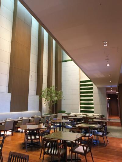 Stay at Osaka Marriott Miyako Hotel  Anti-COVID-19 Ver.